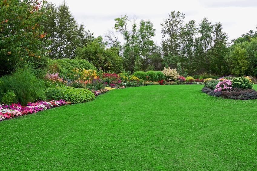 تنسيق الحدائق المنزلية الشارقة