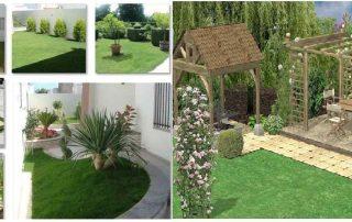 تنسيق الحدائق المنزليه ام القيوين