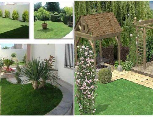 تنسيق الحدائق المنزليه ام القيوين |0507687896|افضل الخدمات
