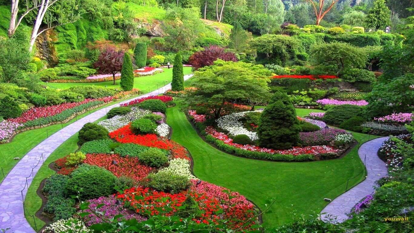 شركة تنسيق حدائق عجمان