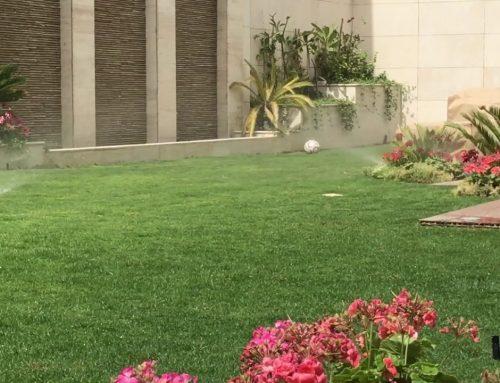 تنسيق الحدائق المنزليه راس الخيمة |0507687896|ارخص الاسعار