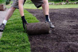 تنسيق حدائق الفجيرة