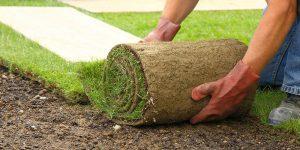 تركيب عشب صناعي ابوظبي